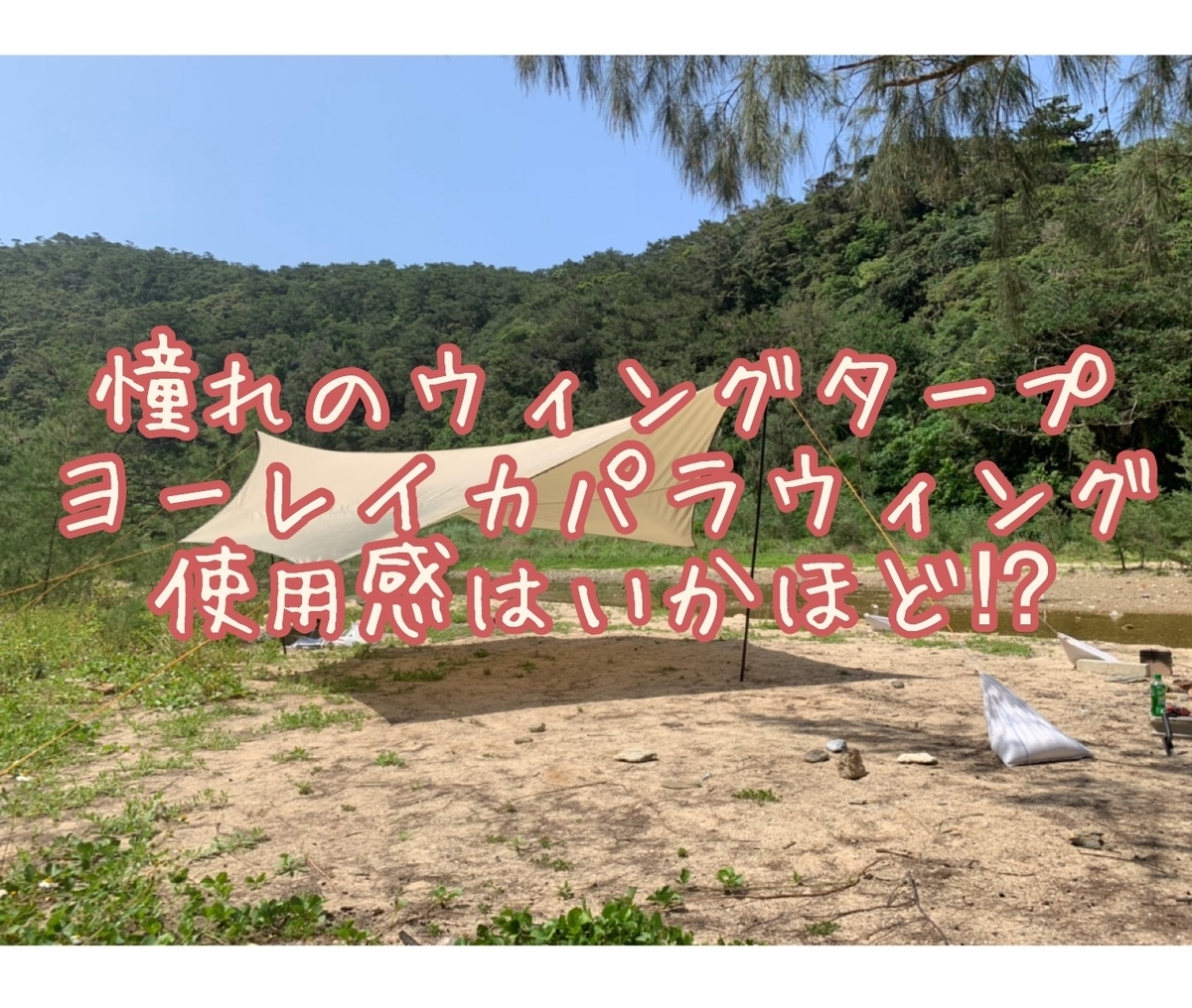 f:id:ushisaku:20190518235650j:plain