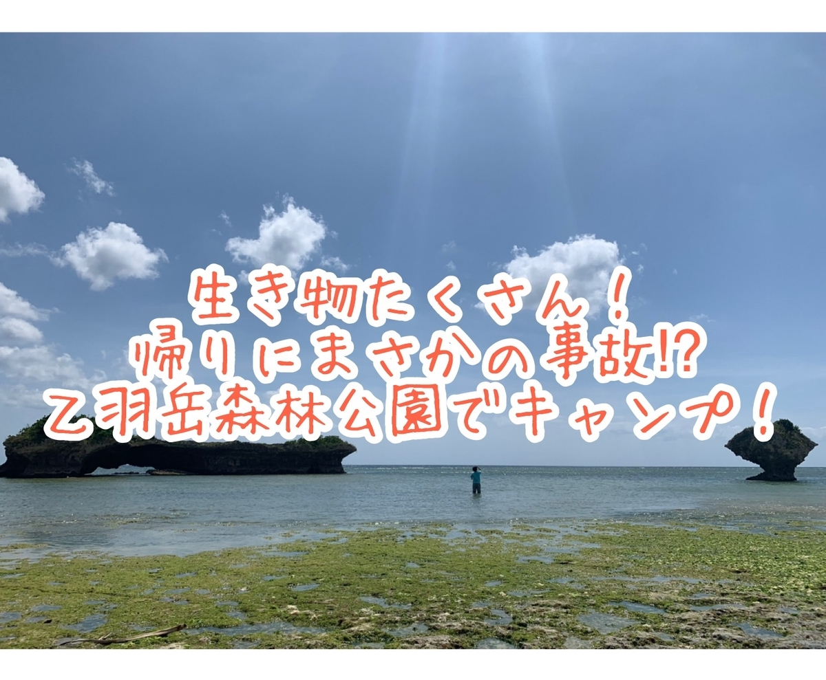 f:id:ushisaku:20190528004203j:plain