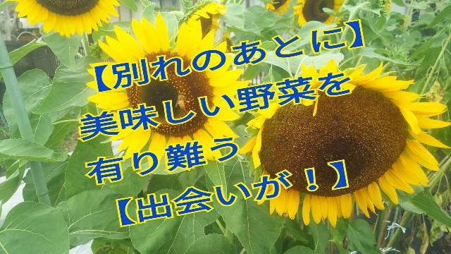 f:id:usiusi111:20190823220330j:image