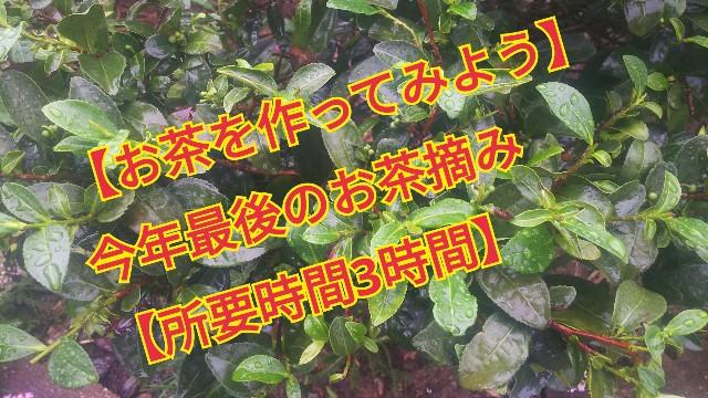 f:id:usiusi111:20190902085204j:image