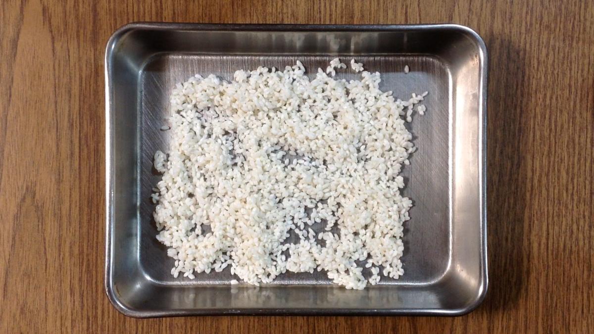 もち米を広げる