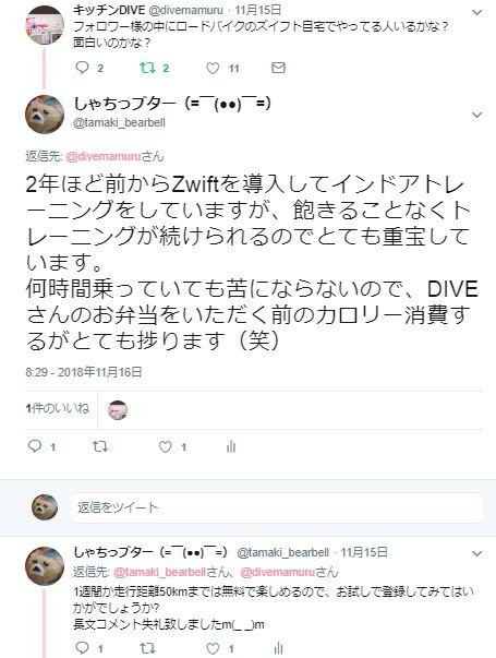 f:id:uso800kuma900:20181209144120j:plain