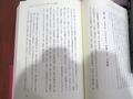 神聖の系譜002