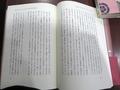 神聖の系譜004