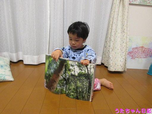 f:id:utachan0831:20200114062326j:plain
