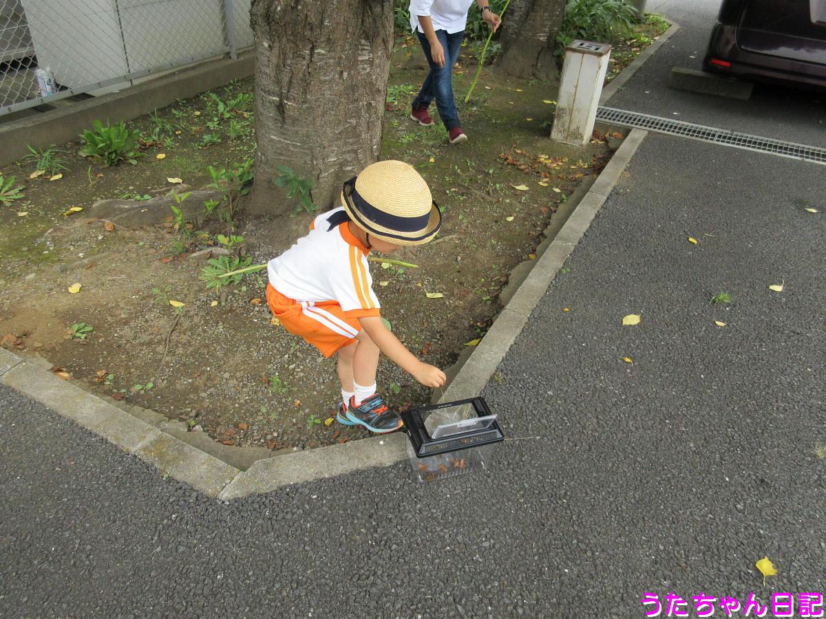 f:id:utachan0831:20200818174639j:plain
