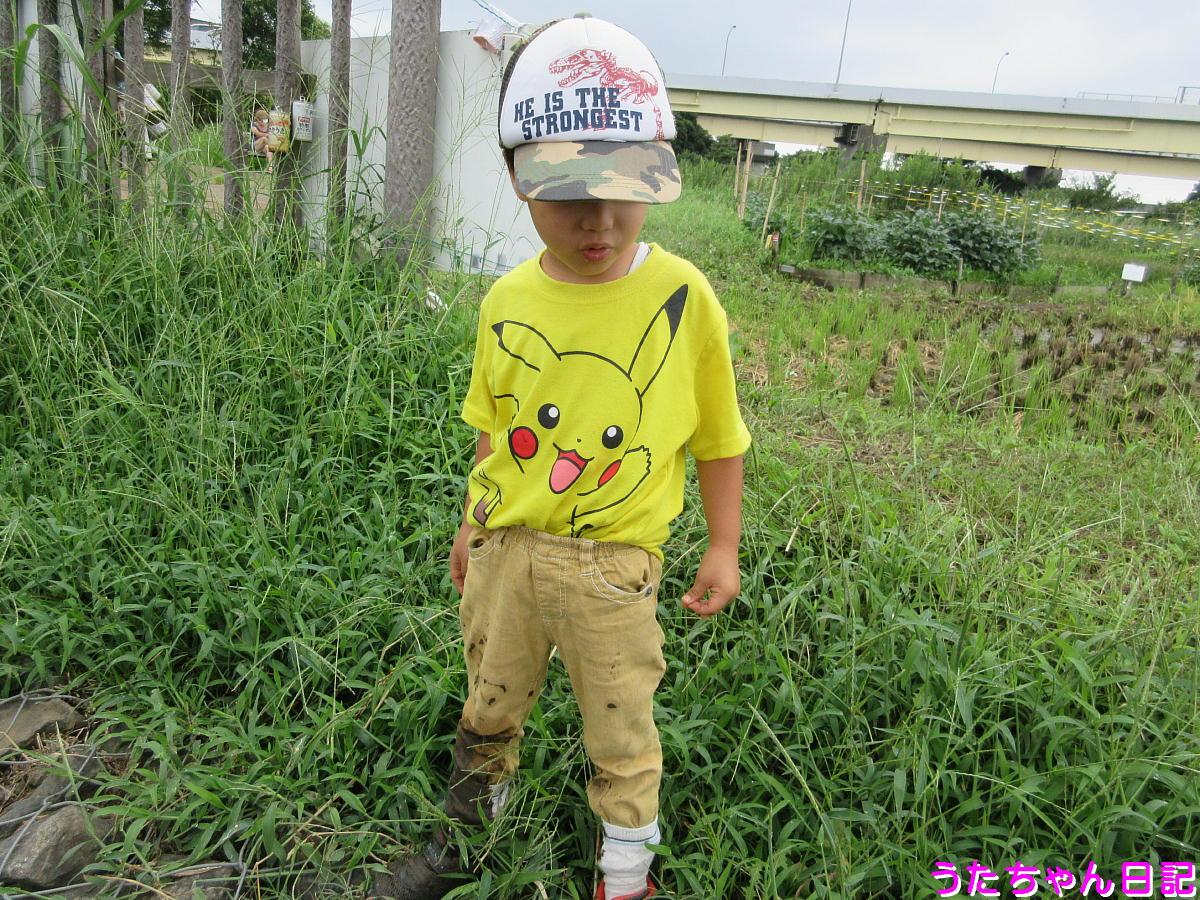 f:id:utachan0831:20200916103603j:plain