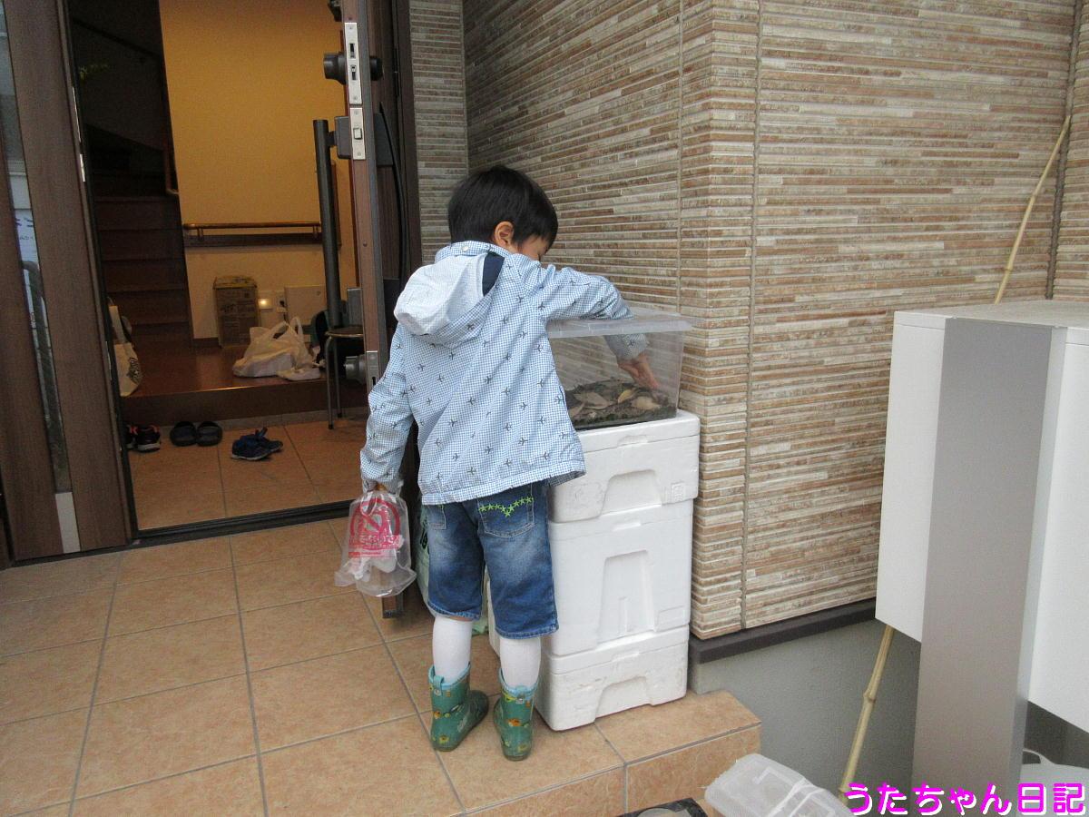 f:id:utachan0831:20210628163014j:plain