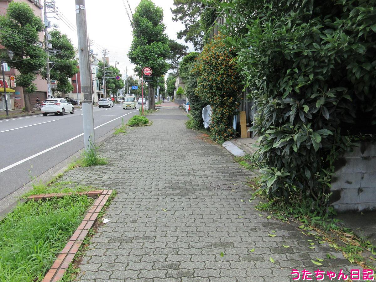 f:id:utachan0831:20211005130840j:plain