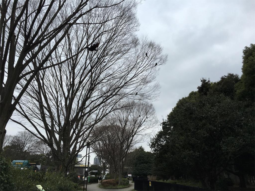 f:id:utakoya-ry88:20160313233519j:image
