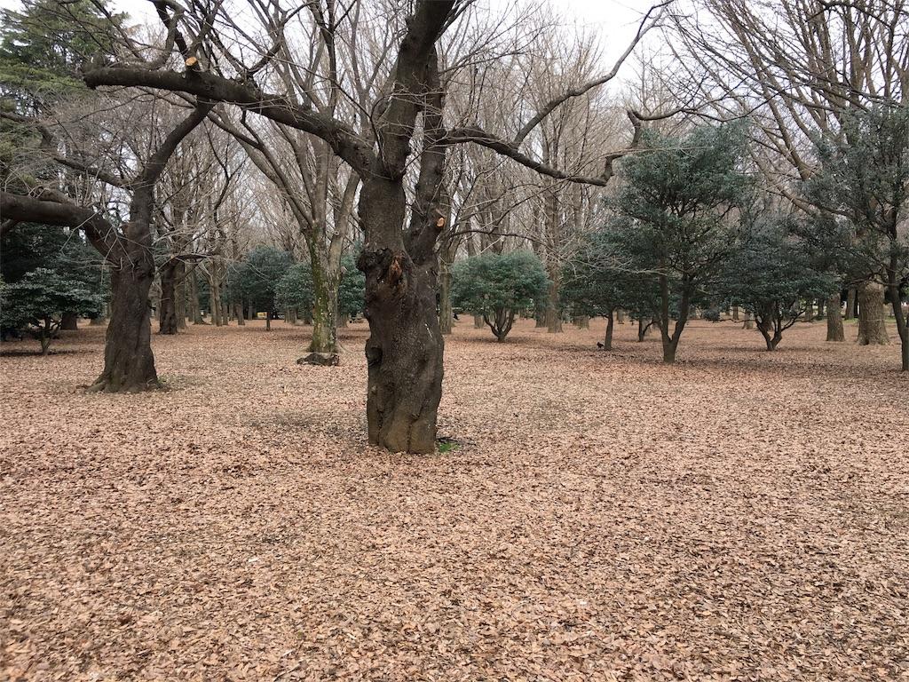f:id:utakoya-ry88:20160313235700j:image