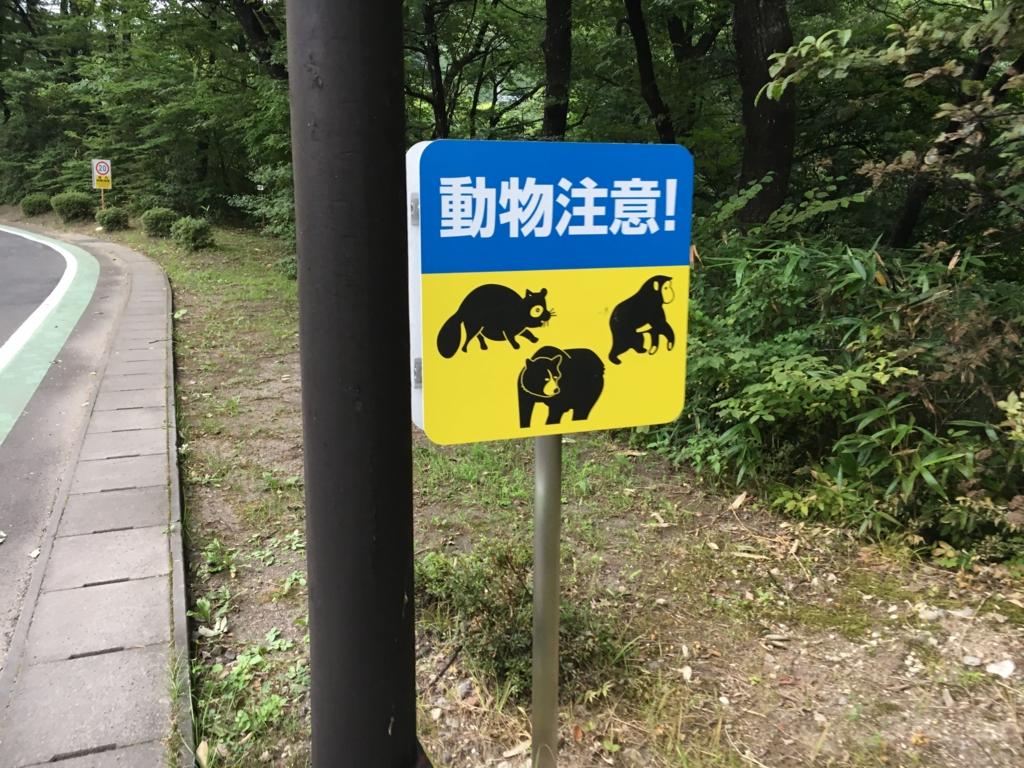 f:id:utakoya-ry88:20170404204842j:plain