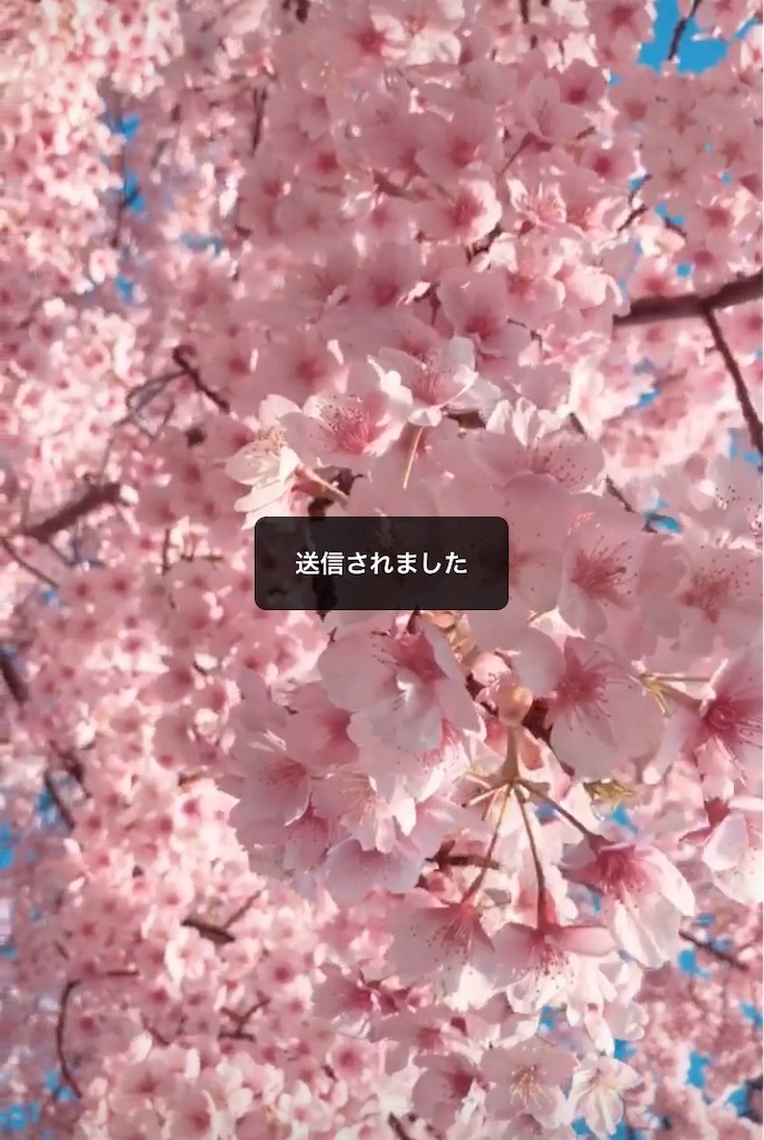 f:id:utatakanohibi:20190313030454j:image