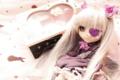[Doll]紫の薔薇