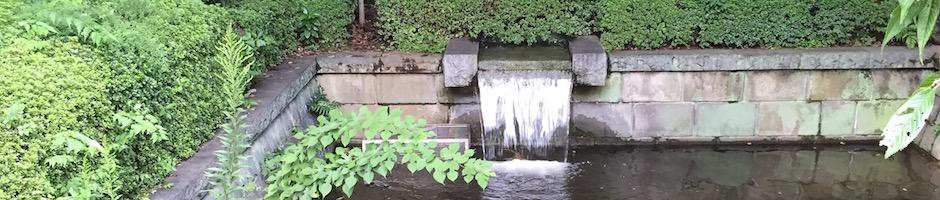 小金井公園の湧水