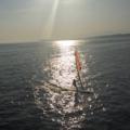 相模湾のウィンドサーフィン