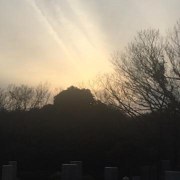 冬の鎌倉霊園