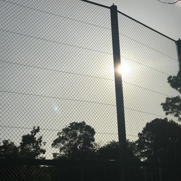 公園のフェンスに差し込む西陽