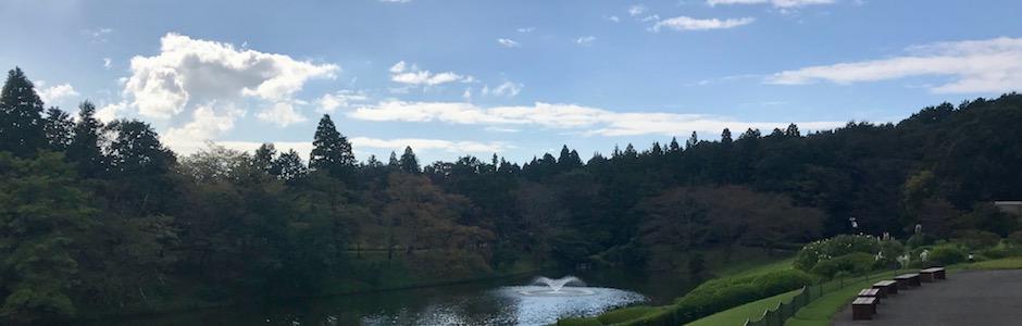 川村美術館庭園