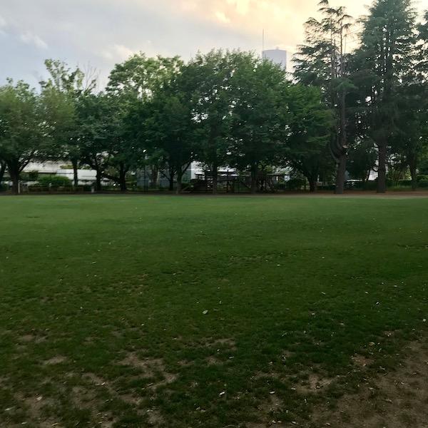 キャッチボールをした公園