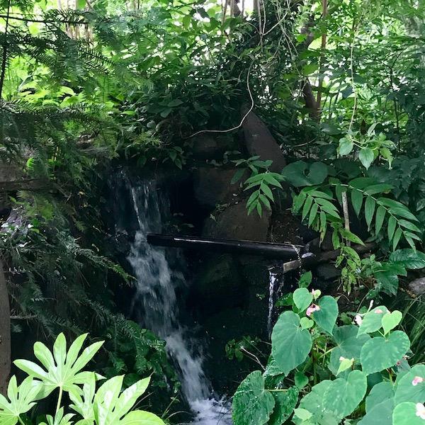 公園の小さな滝