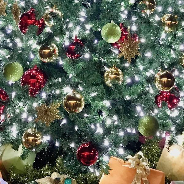 気の早いクリスマスツリー