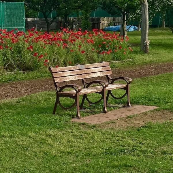 公園の空っぽのベンチ