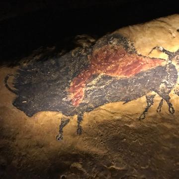 ラスコー洞窟壁画 牛