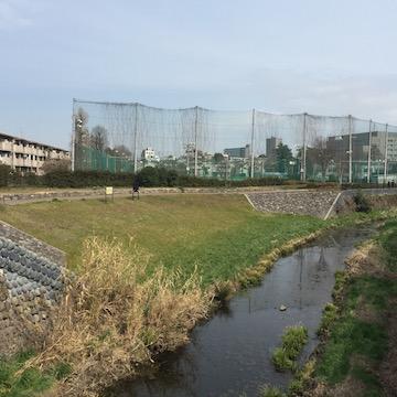石神井川と野球場