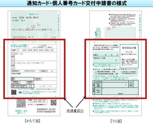 マイナンバーカード 申請者ID