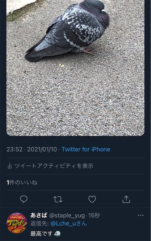 f:id:utsugi_yuma:20210201215816j:image