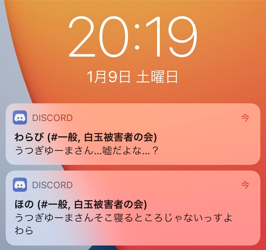 f:id:utsugi_yuma:20210201215850j:image
