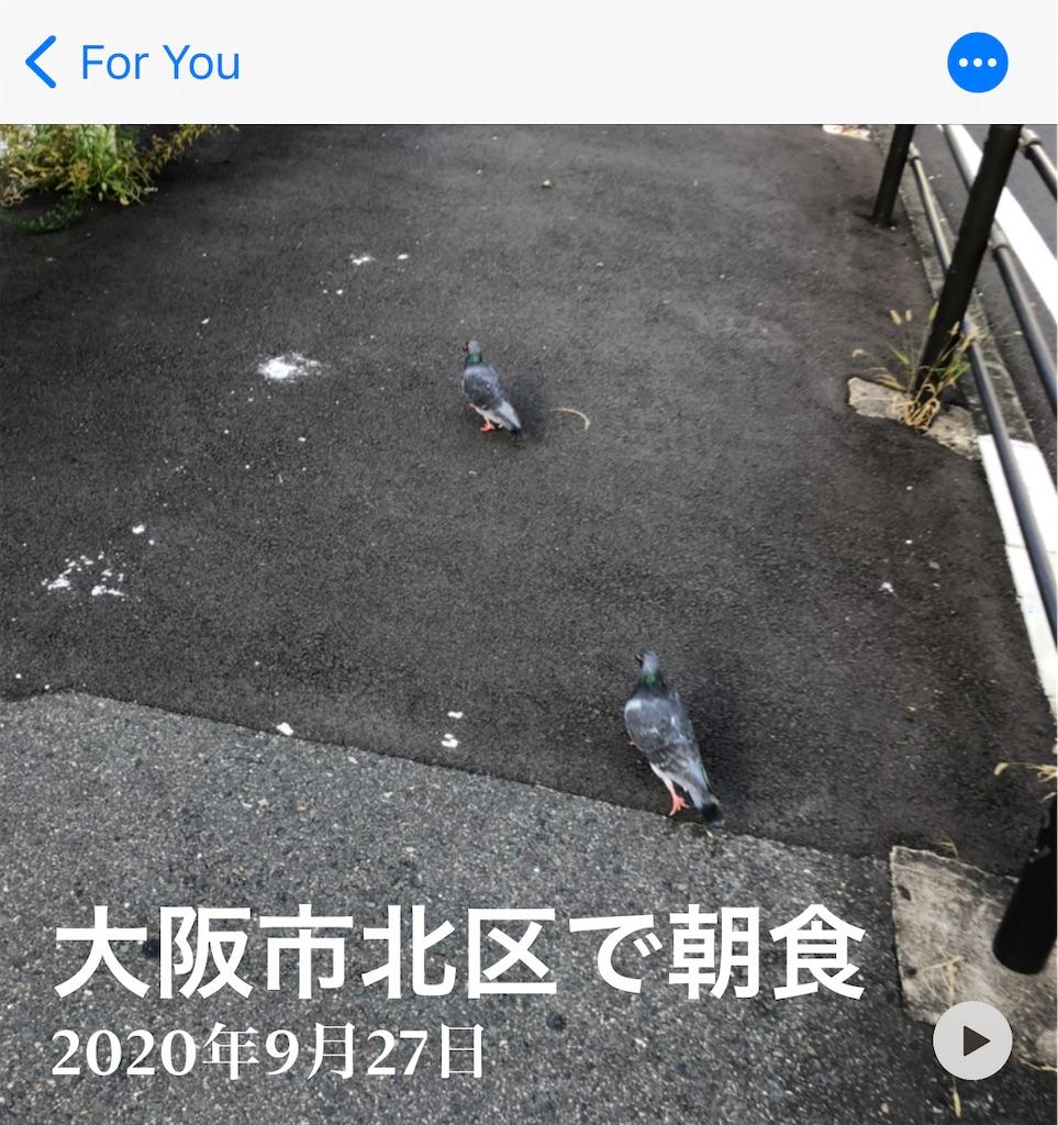 f:id:utsugi_yuma:20210201223417j:image