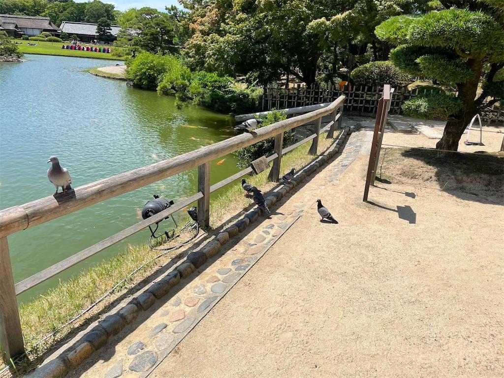 f:id:utsugi_yuma:20210724074529j:image