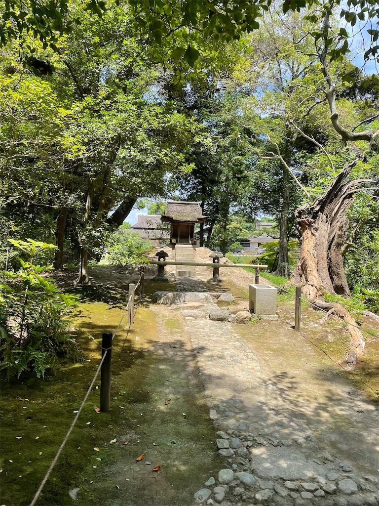 f:id:utsugi_yuma:20210724074732j:image