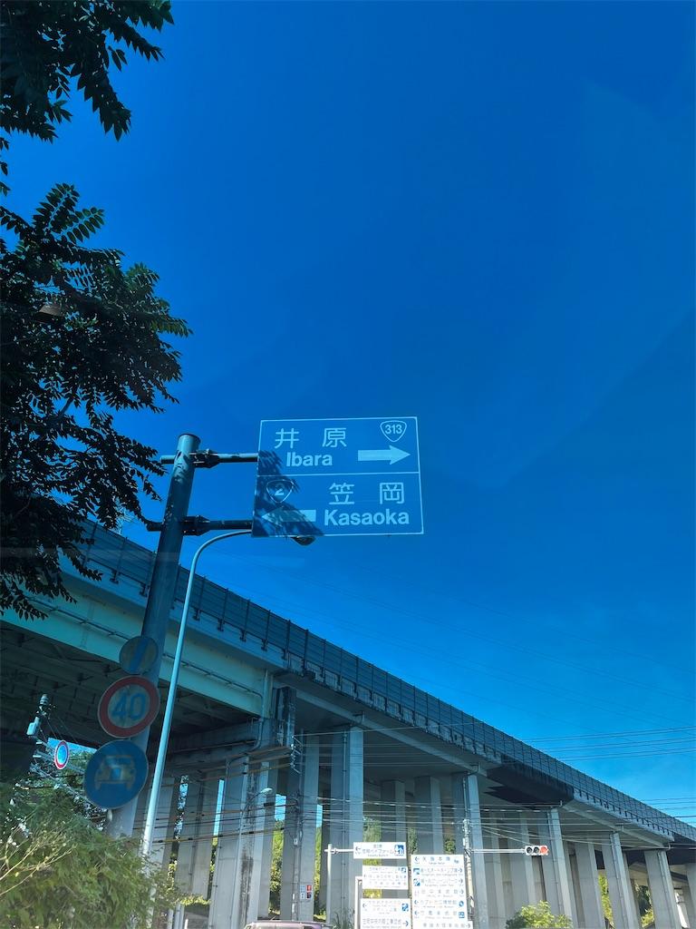 f:id:utsugi_yuma:20210728122513j:image