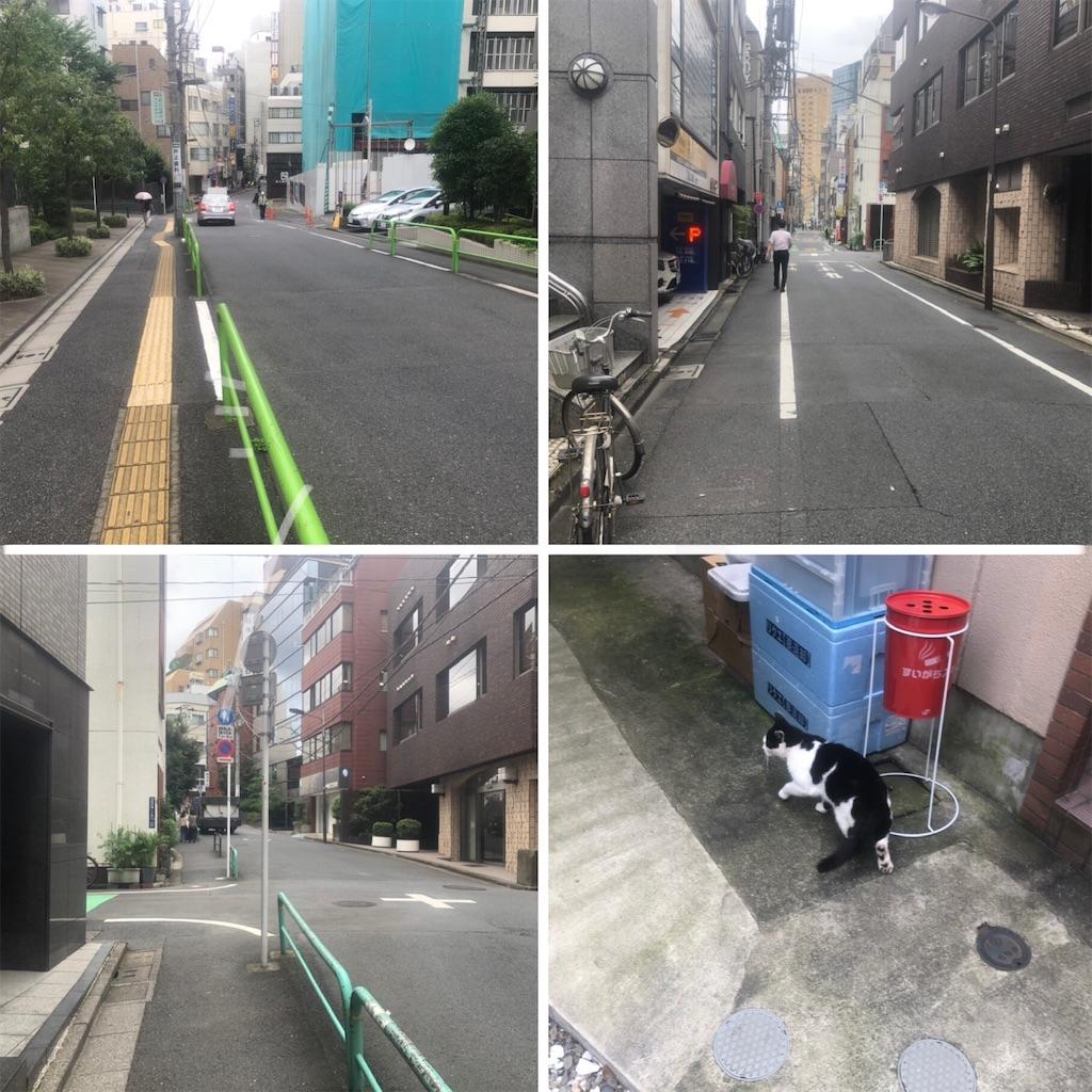 f:id:utsurousagi:20200803125507j:image