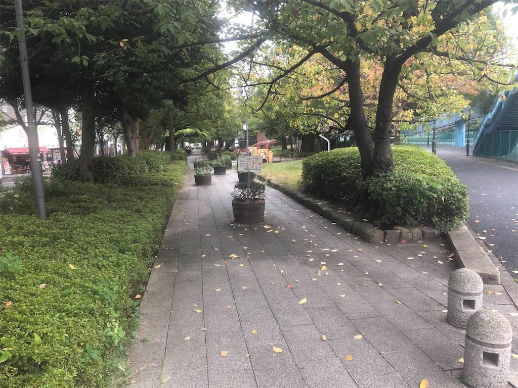 f:id:utsurousagi:20201016112427j:image