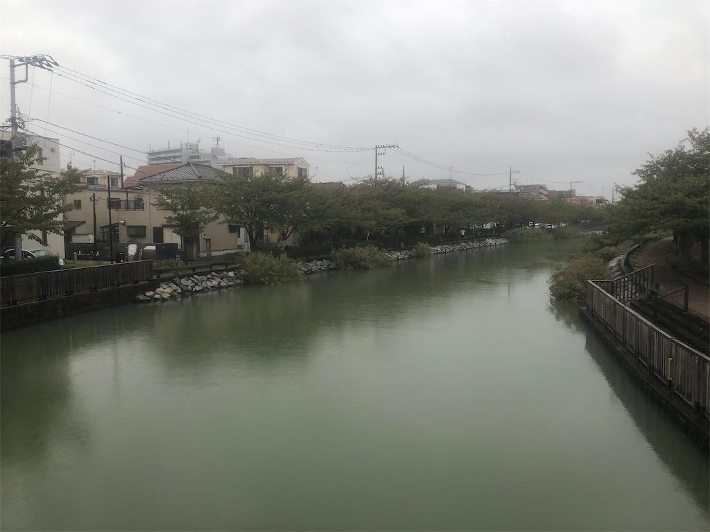 f:id:utsurousagi:20201017171706j:image