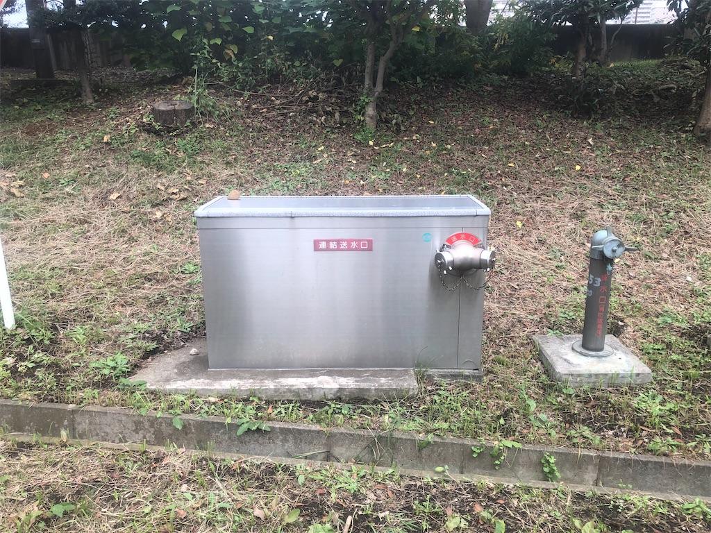 f:id:utsurousagi:20201031210109j:image