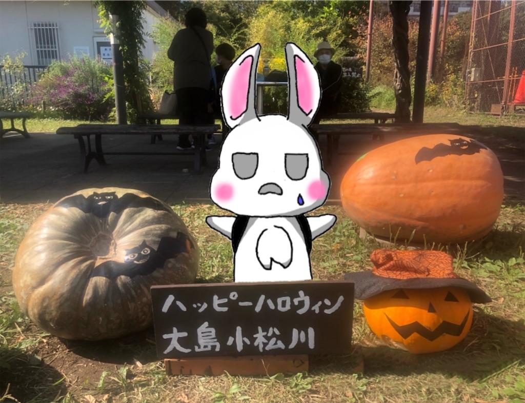 f:id:utsurousagi:20201101060653j:image