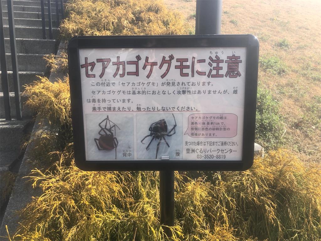f:id:utsurousagi:20210220151556j:image
