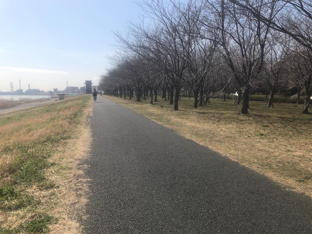 f:id:utsurousagi:20210304194610j:image