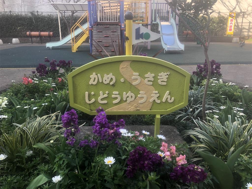 f:id:utsurousagi:20210310211829j:image