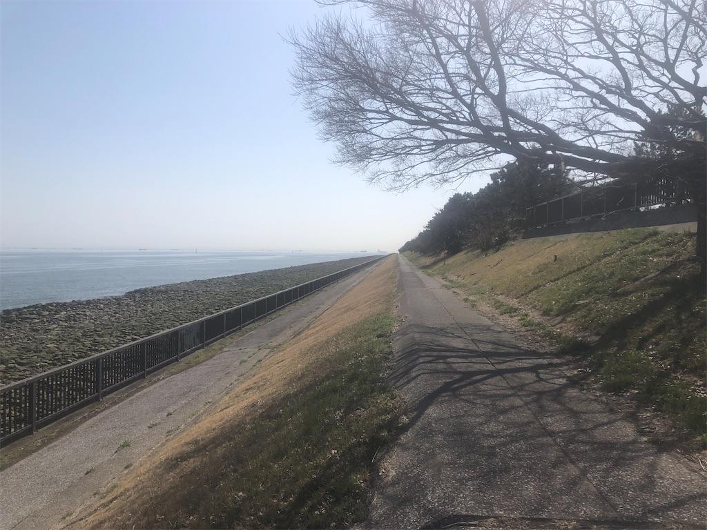 f:id:utsurousagi:20210323222103j:image