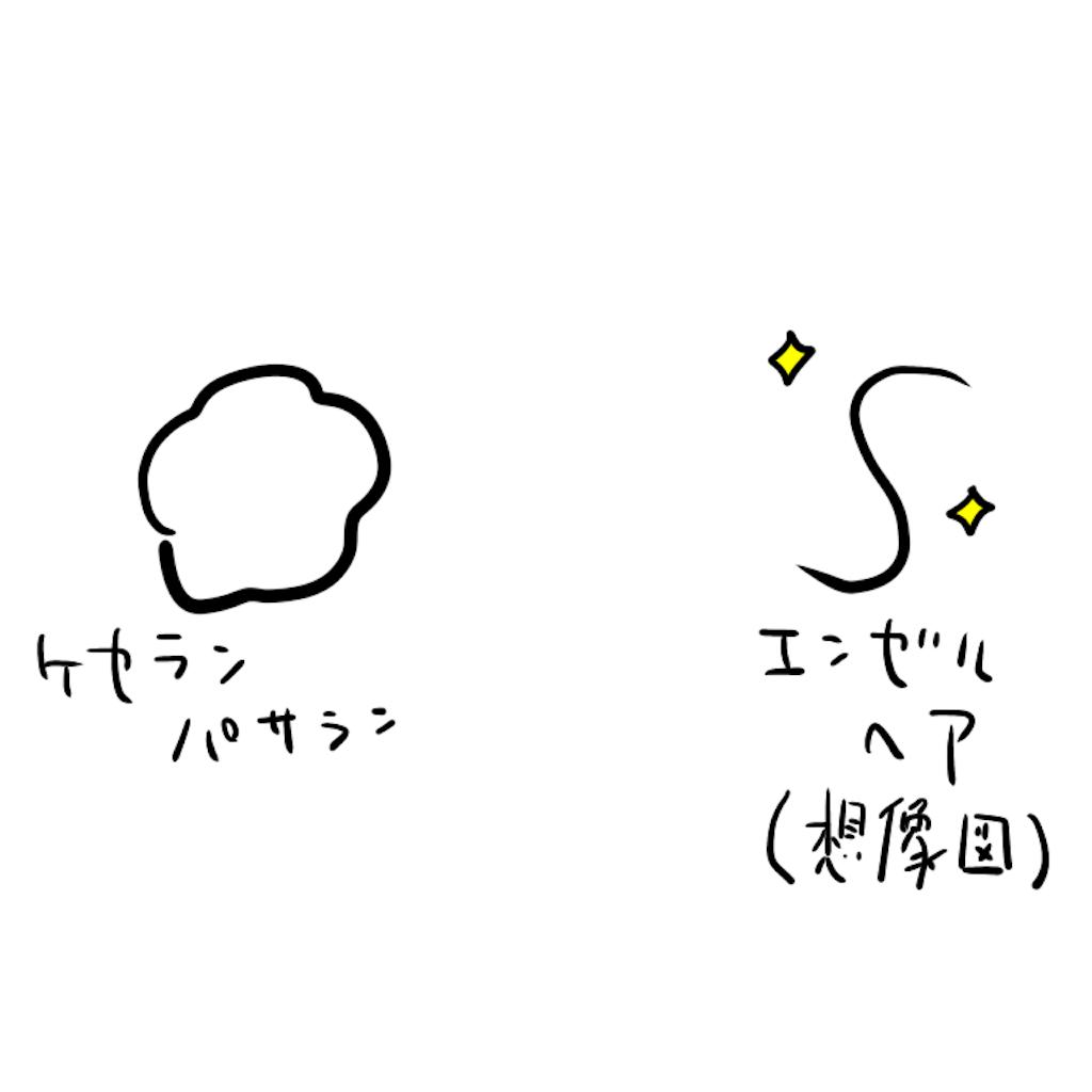 f:id:utsurousagi:20210522074313p:image