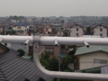 桶川市上日出谷で、見えるその先のパラスタック。.JPG