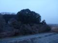 前橋局・児玉局方向は、雑木林です。