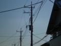 隣の電柱に、トランスが載せられていました。