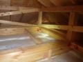 2Fの天井裏。